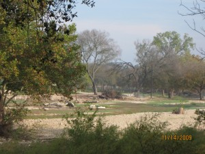 View of Local Park Across the Creek