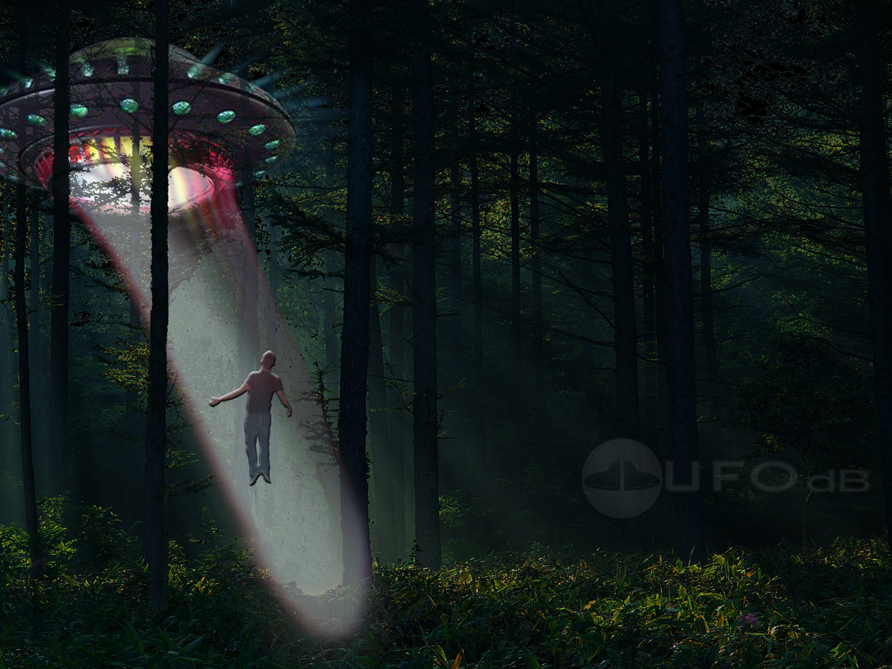 Coast to Coast AM's Cases of Alien Abduction: