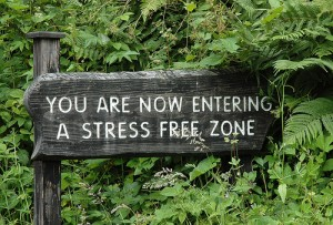 Now Entering a Stress Free Zone