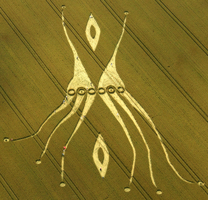 A Fascinating Crop Circle  in Allington, Nr All Cannings, Wiltshire