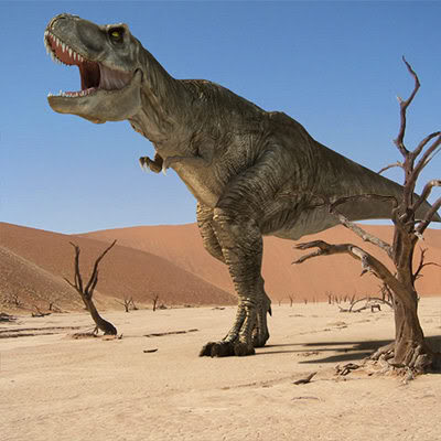 One of World's Biggest Dinosaurs Unearthed in Argentina