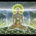 vibrational grid around body