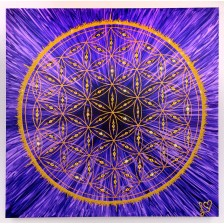 Arcturian Geometry – These Pictures are Beautiful and Great for Increasing Consciousness!