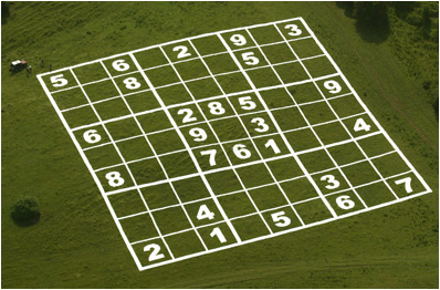 Beginners Guide on How to Make Your Own Crop Circles