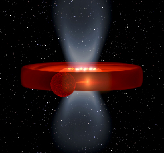 From one collapsing star, two black holes form and fuse