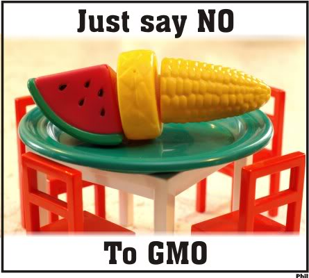 'Ten-year GMO ban sounds rather good idea' – expert