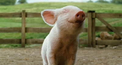 Scientists Grow Bacon from Pig Stem Cells ~ Could this Lead to the End of the Cruel Treatment of Animals?