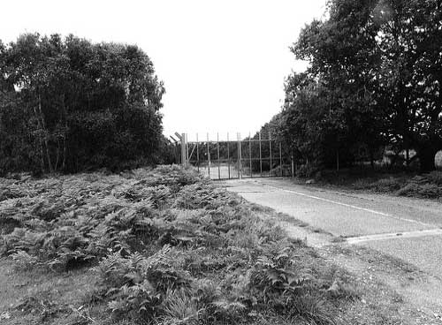 A blow by blow account and history of what happened at Rendlesham Forest in Suffolk, Eastern