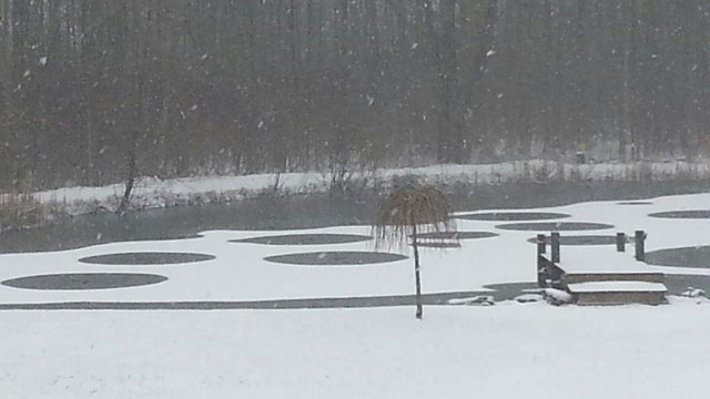 """News Report—""""Mysterious Pond Circles"""" in NY"""