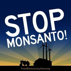 Organic Spies launches Operation Monsanto Stock Plunge: See the video, sell the stock