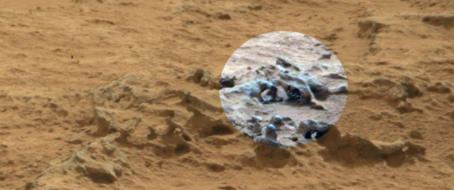 Mars Fossil : NASA Curiosity Photographed Fossilized Creature On Mars