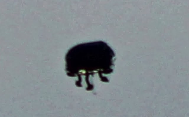Great UFO Photos and Video, Shape-Shiifting UFO Over Germany