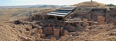 World's oldest temple built to worship the dog star Wed, August 21, 2013 G%C3%B6bekli_Tepe