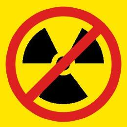 "A ""Nuclear-Free Zone"" in the Middle East? Why Israel will not Join the Non-Proliferation Treaty"