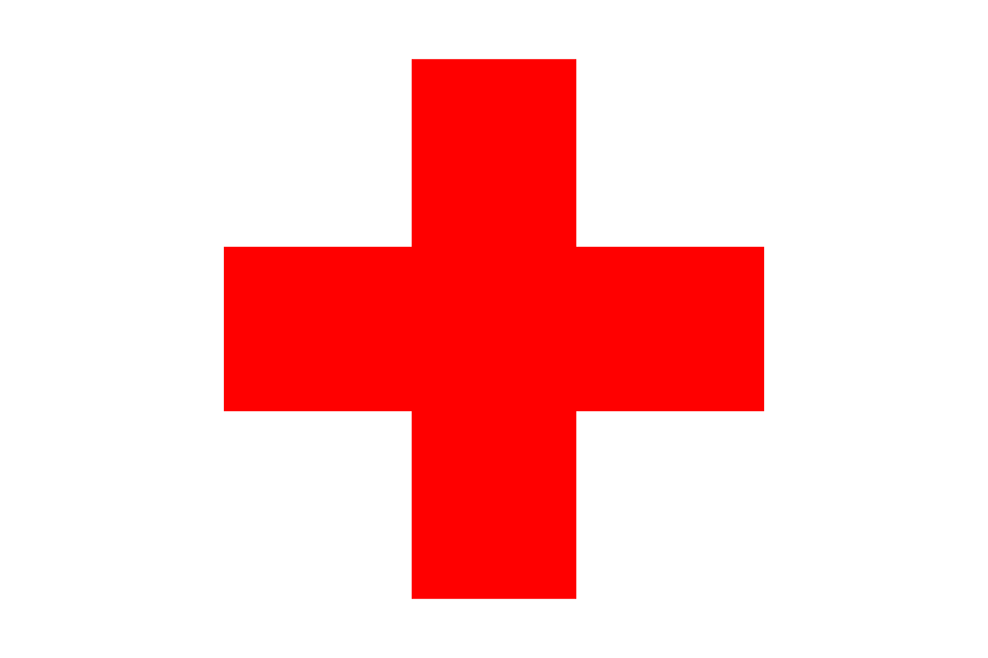 LEAKED: Proof the Red Cross Cured 154 Malaria Cases with MMS
