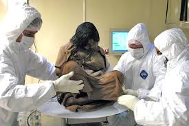 A female mummy -15 year old Incan girl frozen for 500 years!