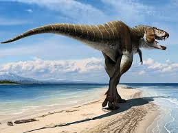 New tyrannosaur discovered in southern Utah