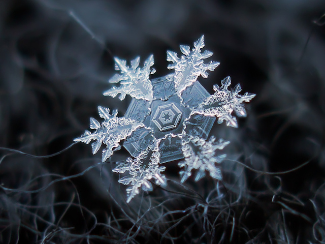 How to take photos of snowflakes