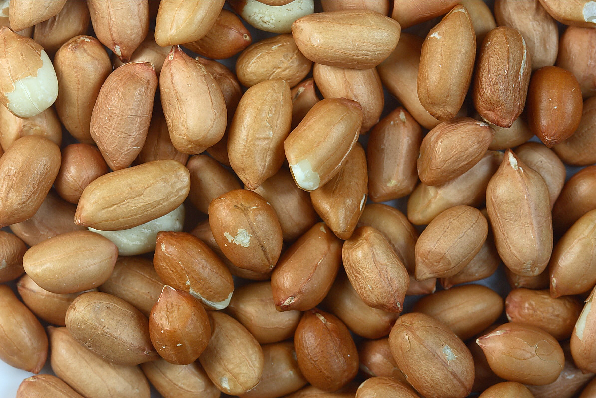 Peanut allergy treatment 'a success'