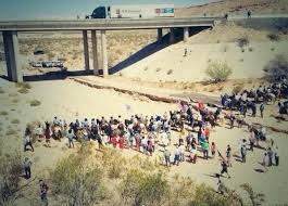 More on The Bundy Ranch….