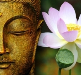 The Symbolic Meaning Of The Lotus Flower