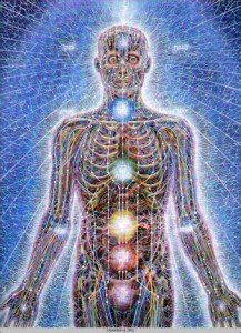 body's energy fields