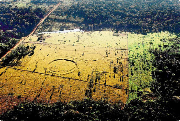 A previously unknown ancient civilization discovered in the amazon