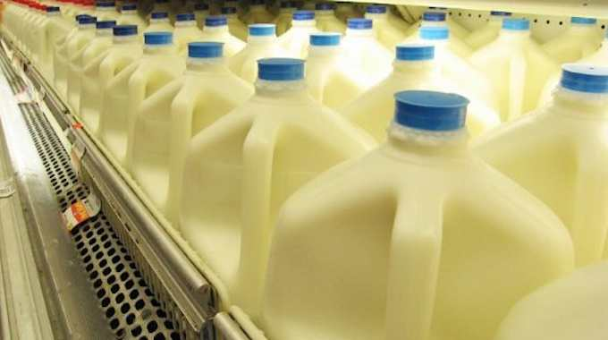 Why You Should Stop Drinking Cow Milk For Good