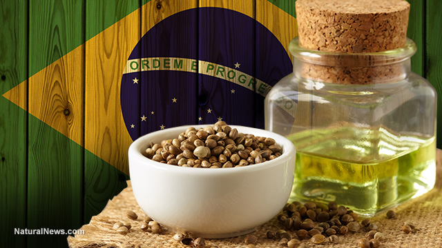 MEDICAL BREAKTHROUGH: Hemp cannabidiol (CBD) product approved by Brazilian government for treatment of cancer