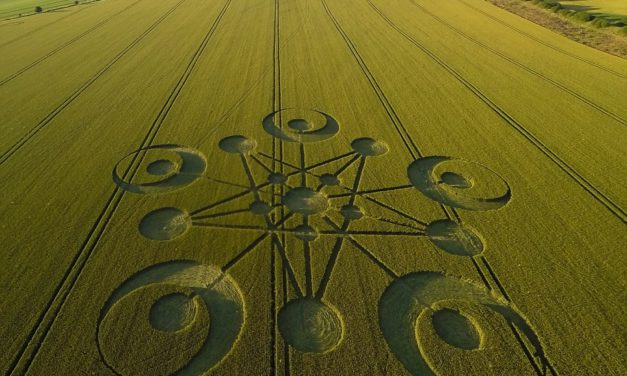 Crop Circles are the Codes of the Cosmos