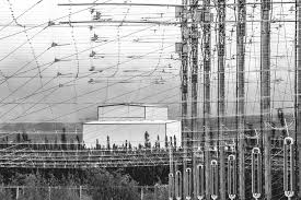Weaponized Cell Towers and Cellphones: 21st Century's Silent, Invisible Killer by Design