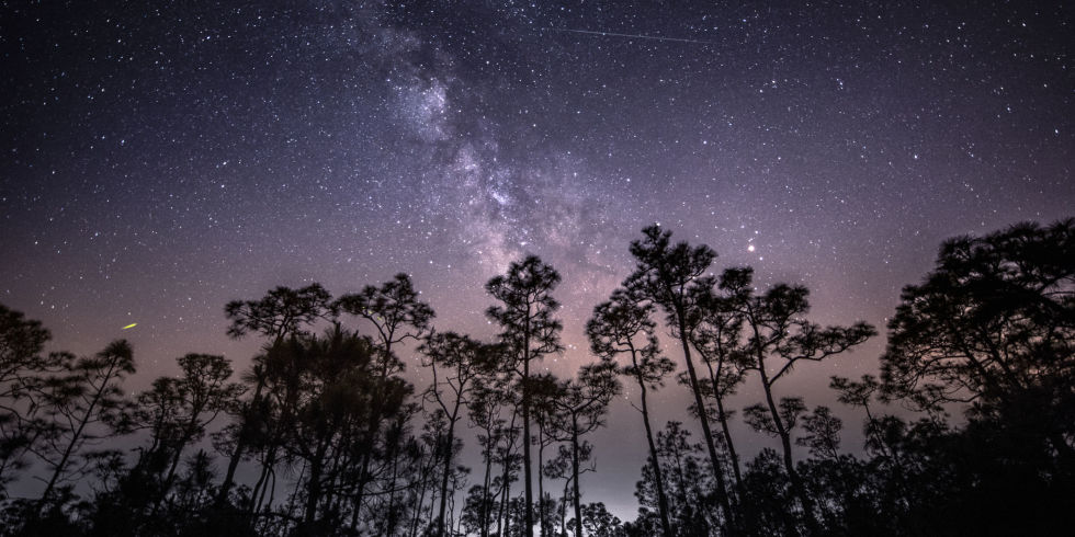 The Meteor Shower of the Decade Is Coming This Week