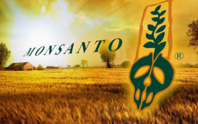 700,000 Petition the US Government to Stop Monsanto-Bayer Merger