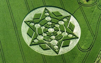 This video 'proves' we've not been told everything about Crop Circles