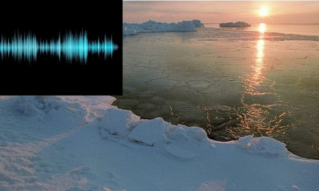 The Canadian Military Is Investigating a Mysterious Noise Coming from the Bottom of the Sea In the Arctic