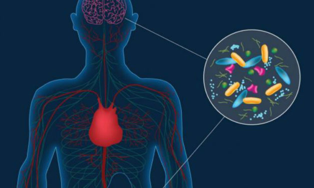 Parkinson's May Actually Originate From Microbes in the Gut
