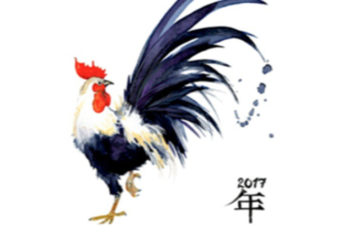 Tanaaz: Chinese Astrology: Year of the Yin Fire Rooster 2017