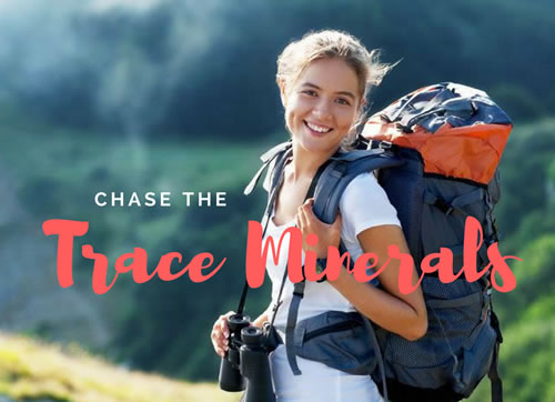 Trace Minerals for Longevity