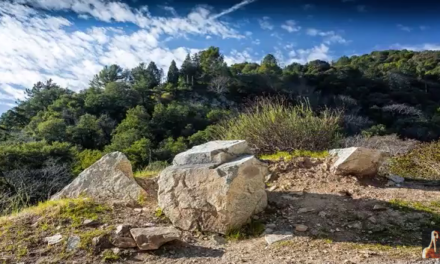 Evidence for Ancient Pre Columbian Race of Europeans in America [VIDEO]