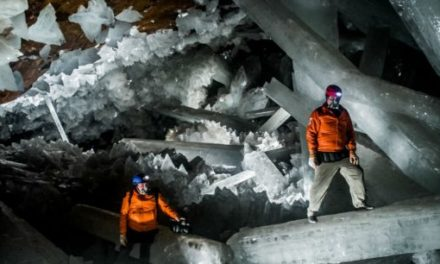 Unknown Lifeforms Found Hibernating Inside Ancient Crystals