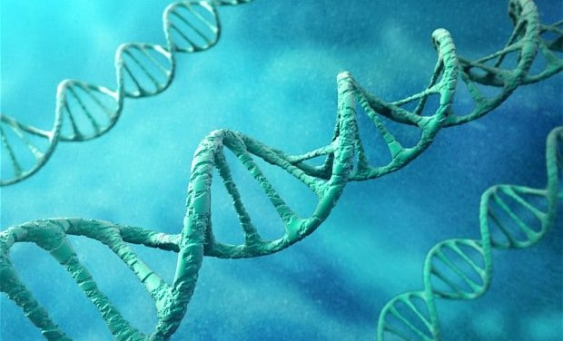 Jon Rappoport – Genetically modified people: what could go wrong?