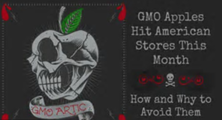 GMO Apples Hit American Stores This Month: How and Why to Avoid Them