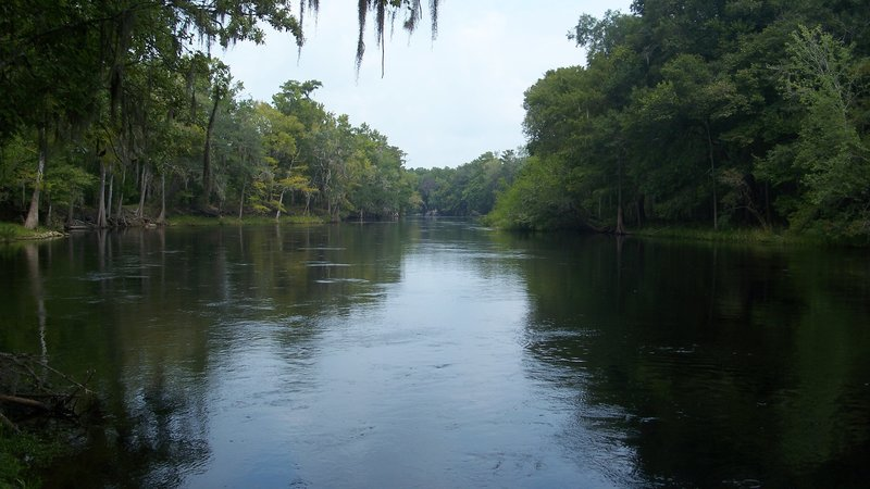 Petition – Stop the Sabal Trail Pipeline