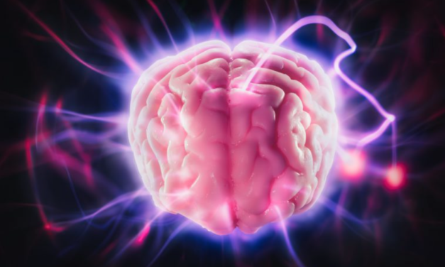 NEW STUDY REVEALS ANOTHER ASTONISHING DIFFERENCE BETWEEN THE BRAINS OF MEDITATORS & NON-MEDITATORS