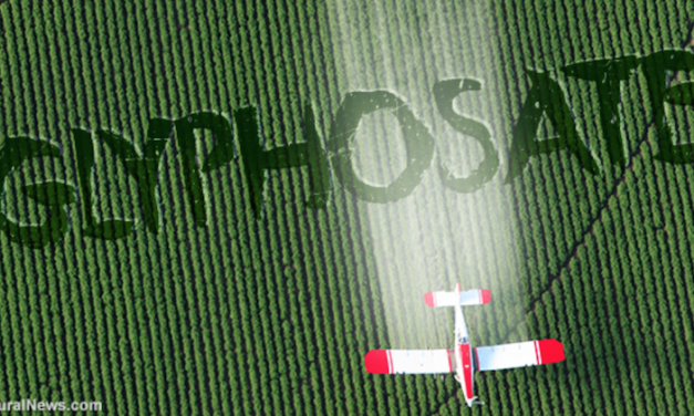 "Coincidence? Monsanto patented glyphosate as an ""antibiotic"" drug, claiming weed killer is medicine"
