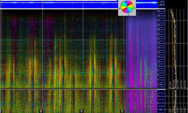 Schumann Resonance on Day 31 of the 40 Day Meditation Blitz