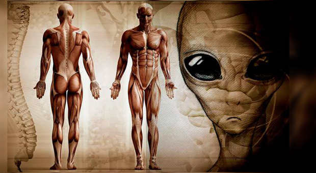 Scientist Claims Humans Are Not From Earth But Evolved On Another Planet