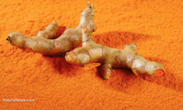 How turmeric kills cancer and how to optimize curcumin absorption