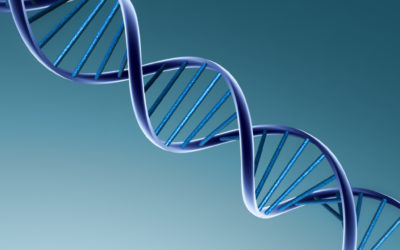 Gene Editing Is Now Precise Enough to Modify a Single Letter of DNA