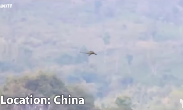 Dragon Caught on Tape in China? [VIDEO]